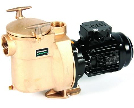 STA RITE 5BR Filterpumpe Bronzepumpe 18,0 m³/h 230 V